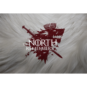 north-remembers-game-of-thrones-skin-decal-vinyl-artwork-500x500