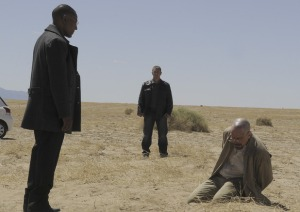 ustv-breaking-bad-s4e11-3
