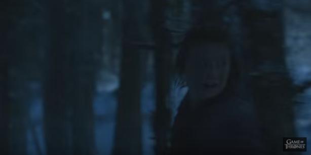 514-Sansa
